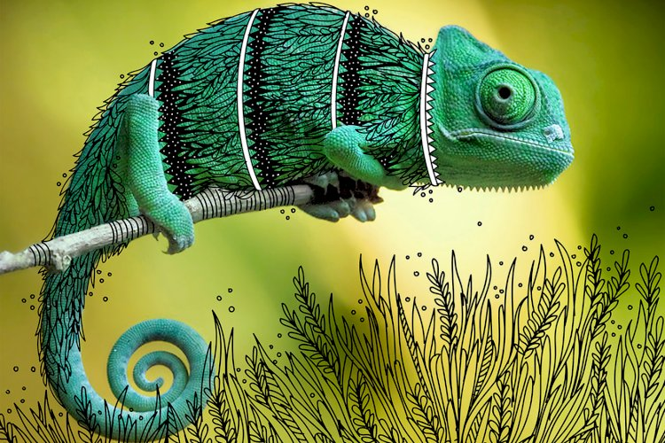 """The Chameleon"" creative doodle art idea by Rohan dahotre"
