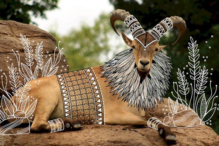 """""""The Ram"""" creative doodle art idea by Rohan dahotre"""